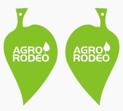 Leaf Shaped Air Freshener - Three Shapes