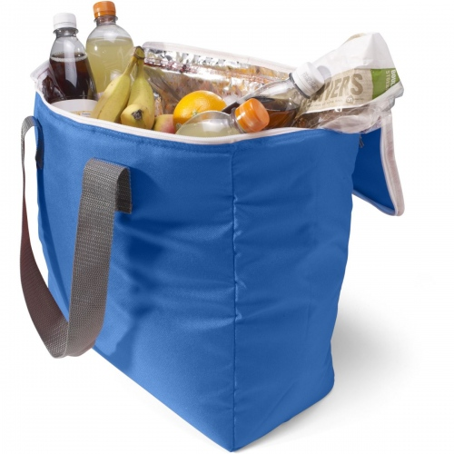 Large Folding Cooler Bag
