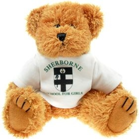 20 cm Sparkie Jointed Bear in a T-Shirt
