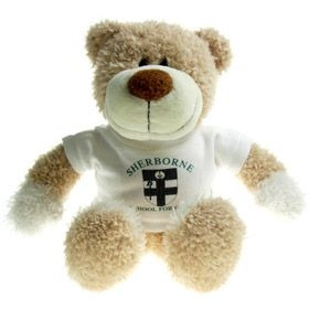 26 cm Wally Jointed Bear in a T-Shirt