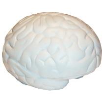 Small Brain Stress Toy