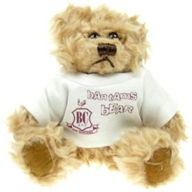15 cm Windsor Jointed Bear in a T-Shirt