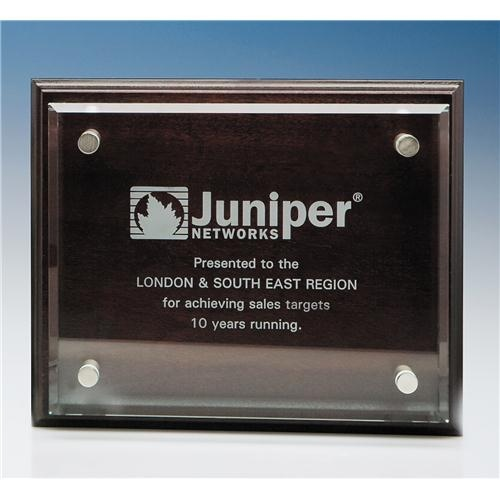 20.5 x 25.5 Clear Rectangle Mounted On A Mahogany Plaque