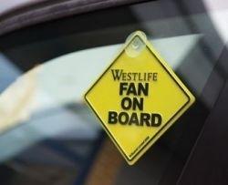 On Board Car Window Hanger
