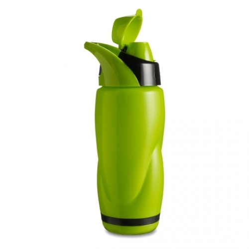 Bottle With 650ml Capacity